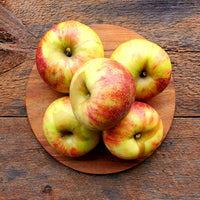 Jonagold Apples (Bag of 5)
