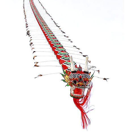 7m Chinese Dragon Kite