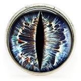 Dragon's Eye Stainless Steel Ring
