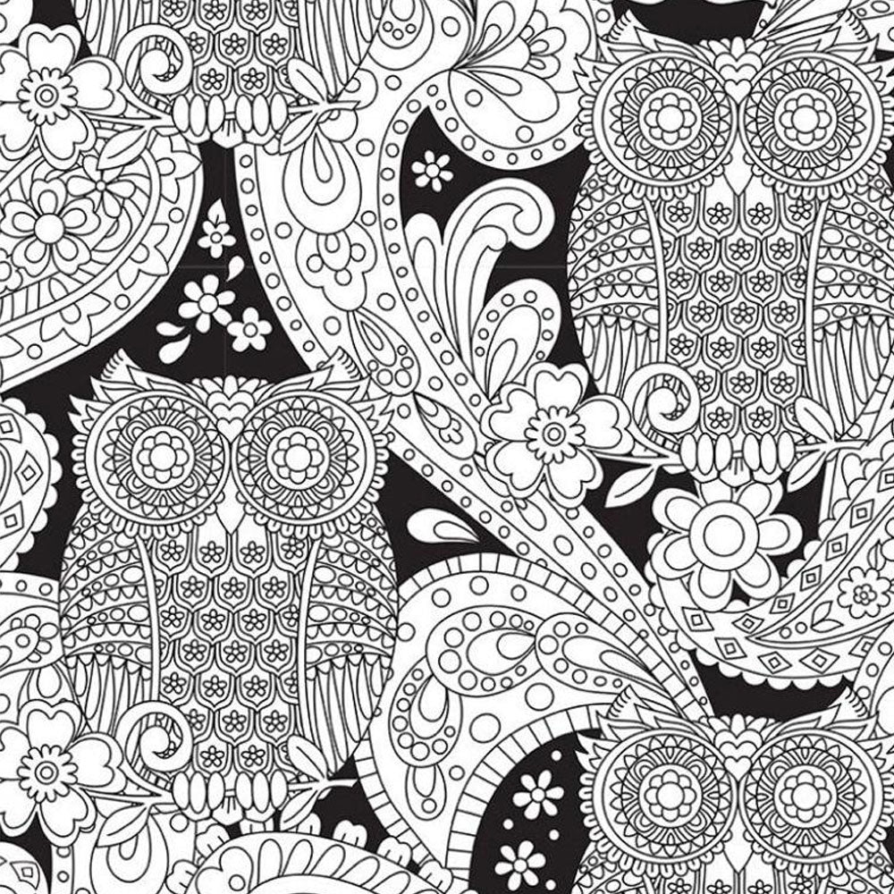 What a Hoot - Color Me Fabric - Michael Miller