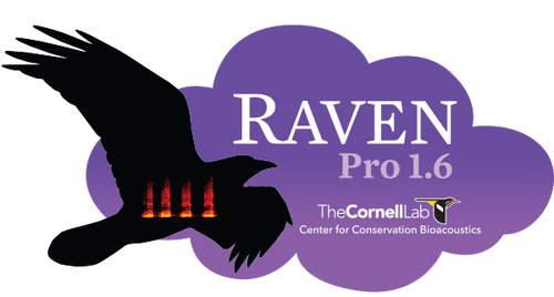 Raven Pro 1.6 - One-Year Subscription (Student)