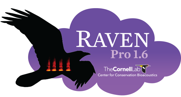 Raven Pro 1.6 - One-Semester Subscription (Student)