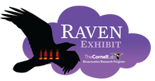 Load image into Gallery viewer, Raven Exhibit - One-Year License