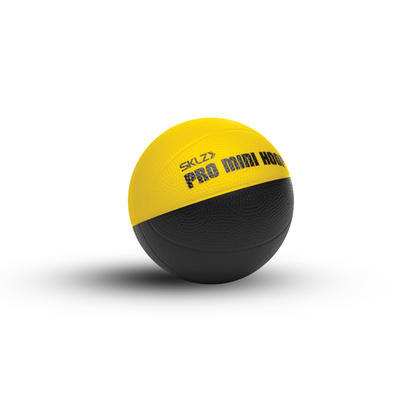 SKLZ Pro Mini Hoop Micro Ball - 4in - Buy now online with delivery in 1-2 days in UAE, Dubai, Abu-Dhabi.