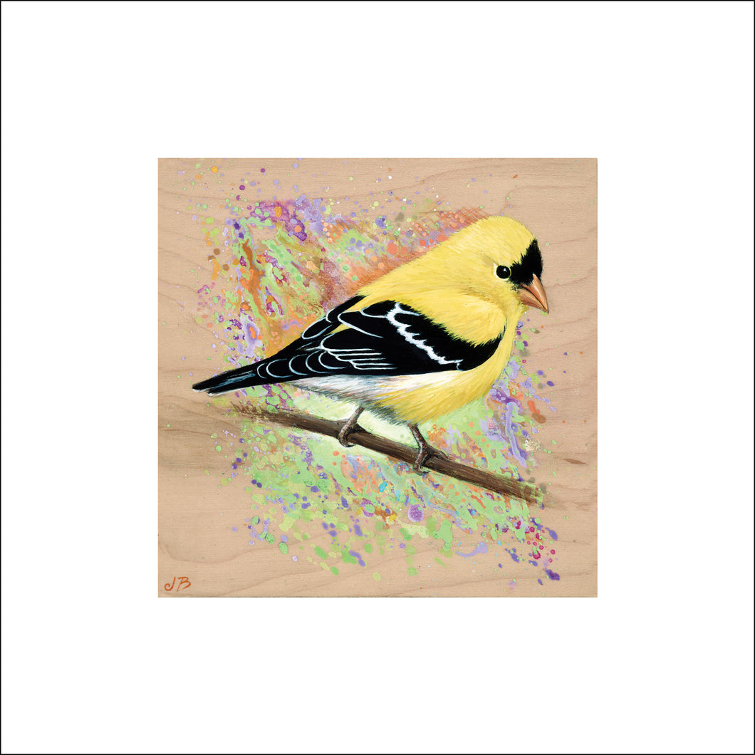 Goldfinch Print on Paper