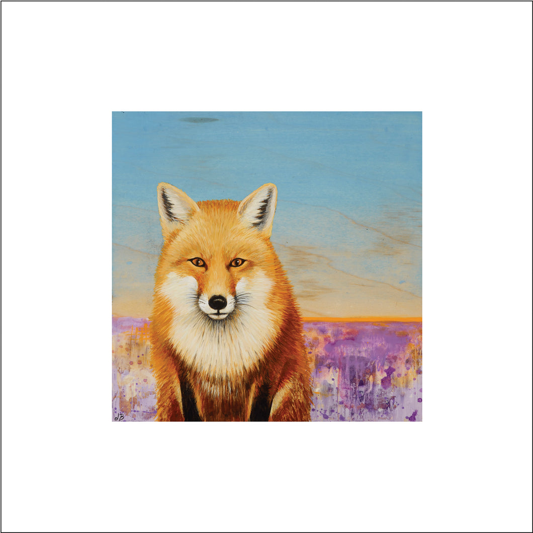 Red Fox Print on Paper