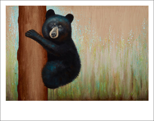 BlackBear, black bear art, bear art interior design, Asheville artist, nature art print