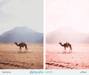 Flytographer Collection Lightroom Presets