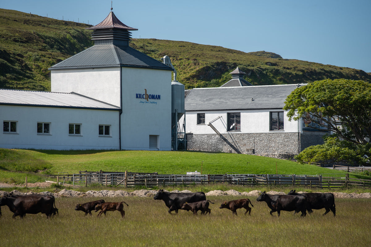 Exploring Kilchoman, Islay's farm distillery