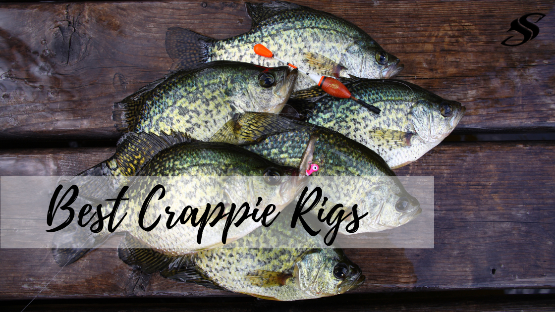 Crappie Fishing: Top Five Most Effective Crappie Rigs