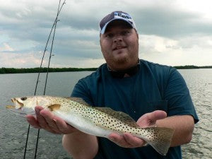 Speckled Trout