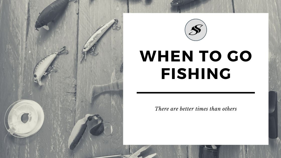 When to go fishing
