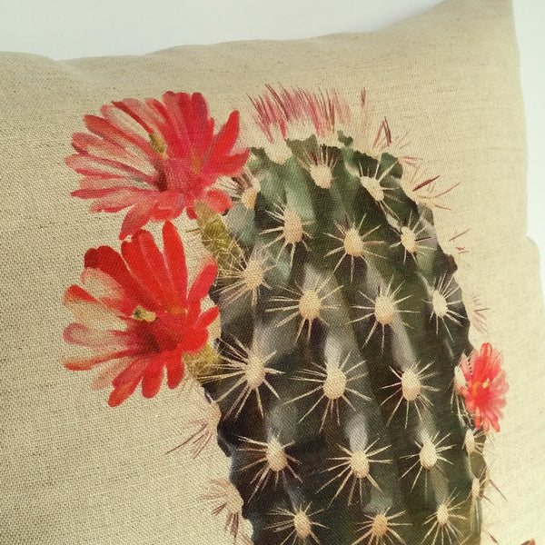 Cactus Cushion upper close up