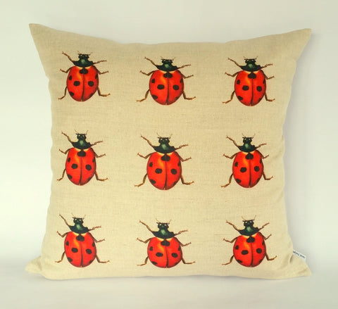 Ladybird (multi) Cushion