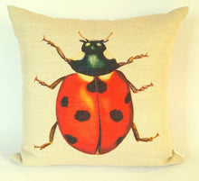 Load image into Gallery viewer, Ladybird Cushion