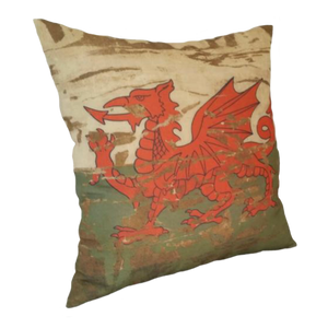 Stonewashed Dragon cushion