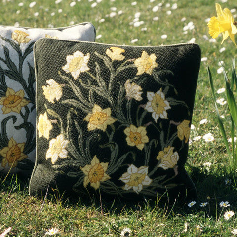 Daffodils (dark background)