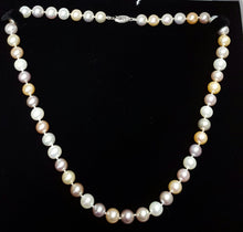 "Load image into Gallery viewer, Pearls, cultured - 18"" necklace, bolder colors, multi-color"