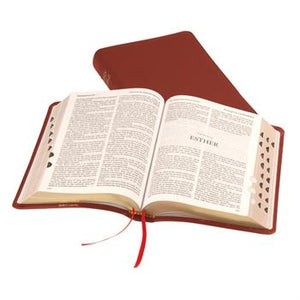 Holy Bible: Windsor: AV: Leather