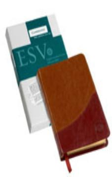 ESV Pitt Minion Reference Bible,  Tan/Burgundy