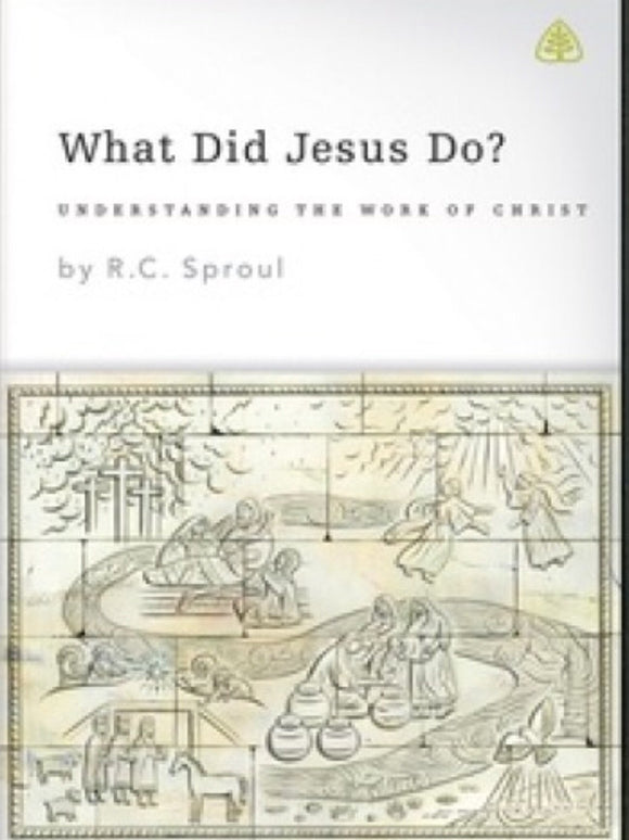 What Did Jesus Do? DVD