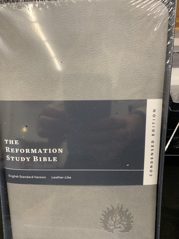 The Reformation Study Bible Condensed edition - light gray, leather like
