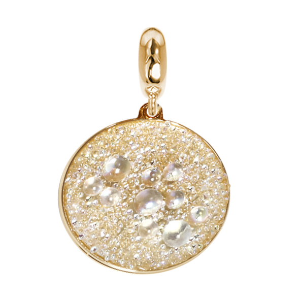 Golden charm with surface galuchat Swarovski aurora borealis