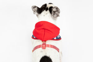 Luxury Winter Harness with Detachable hoodie - Luxury Range