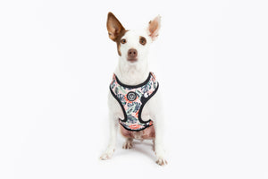Luxury Cockatoo Adjustable Harness - Luxury Range