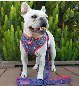 """Floral Mandala"" reversible dog harness"