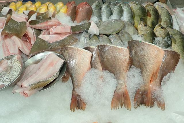 Your guide to buying fresh fish in Singapore
