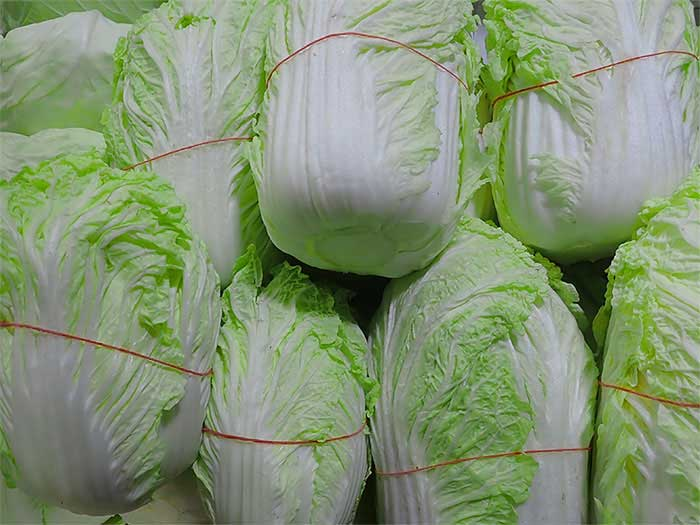 Long Chinese Cabbage - Da Bai Cai 800g - SGWetMarket