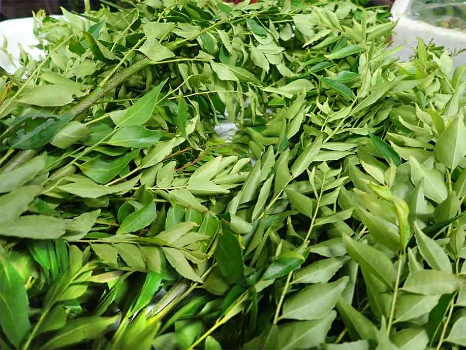 Curry Leaf 200g - SGWetMarket