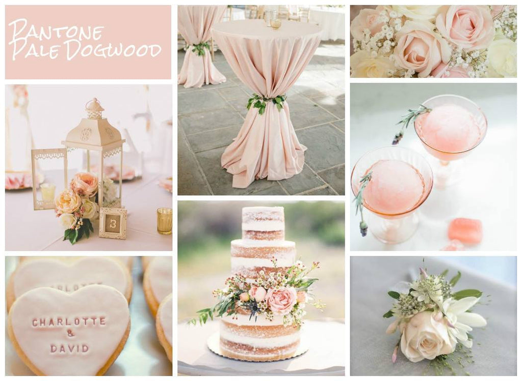 Pale Dogwood wedding ideas