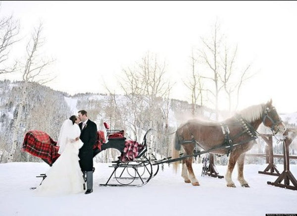 Bride and groom on sleigh