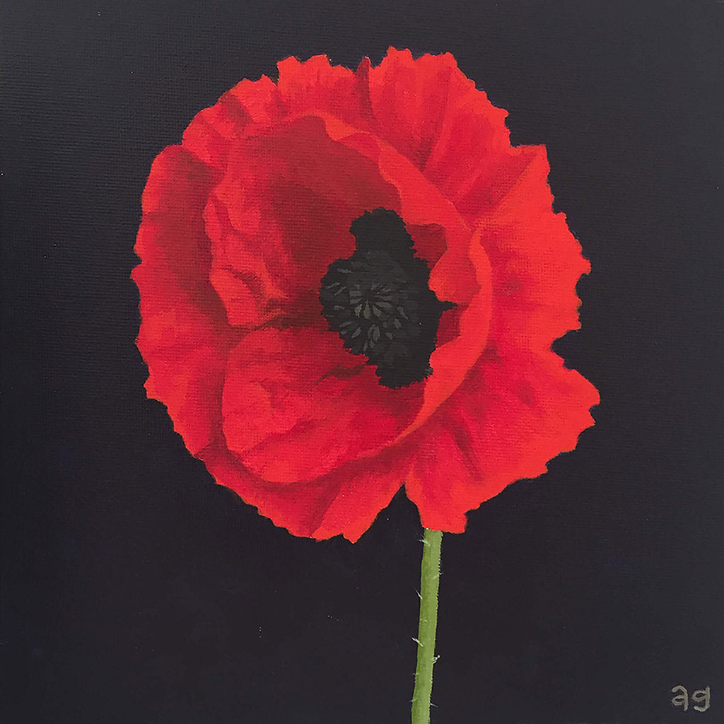 Red poppy flower small painting. Acrylic on canvas panel artwork by artist Amanda Gosse