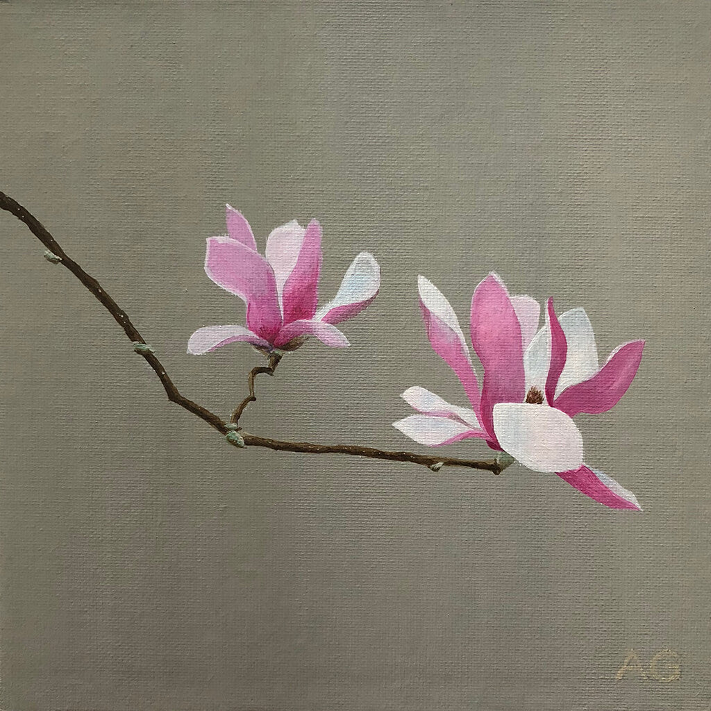 Magnolia blossoms by Amanda Gosse. Original floral painting in acrylic on canvas panel.