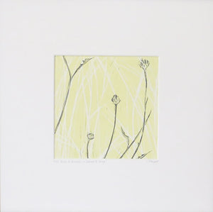 Buds & Grasses in Lemon & Grey OR in Dove Blue & Chocolate by Sarah Knight