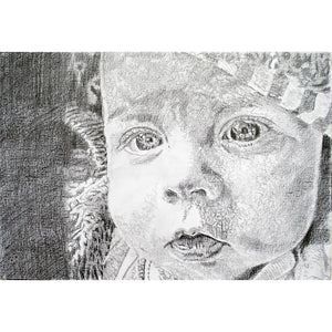 Daisy pencil on paper artwork by Stella Tooth Artist