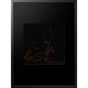 Dutch Masters 05 framed 60x80cm bunch of grapes still life by Michael Frank