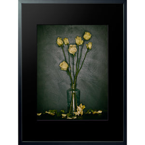 Dutch Masters 18 spent yellow roses framed 80x60cm photograph by Michael Frank