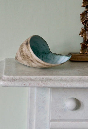 Green Shell by Ruty Benjamini Display