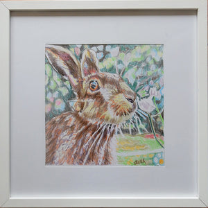 Harry the hare Original Artwork by Stella Tooth Display
