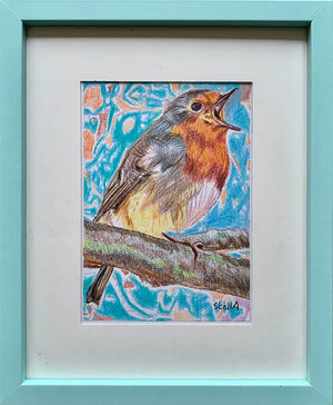 Robin Redbreast bird drawing by Stella Tooth London Artist Wall