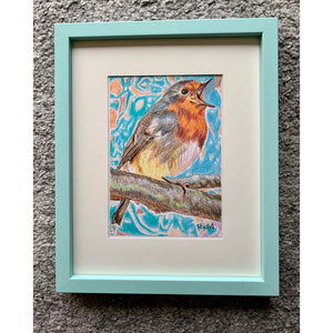 Robin Redbreast bird drawing by Stella Tooth London Artist in Frame