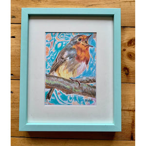 Robin Redbreast bird drawing by Stella Tooth London Artist Framed