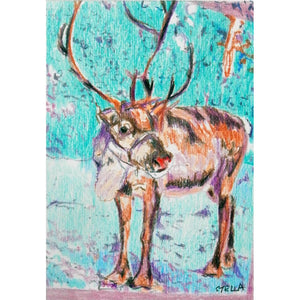Rudolph Reindeer original pencil drawing by artist Stella Tooth full