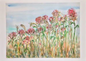 Wild Flowers by Helen Trevisiol Duff giclée print display