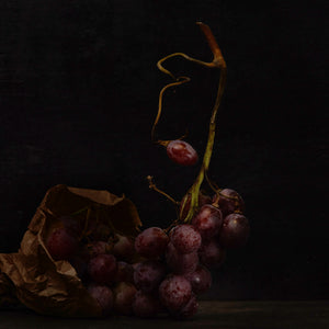 Dutch Masters 05 bunch of grapes still life by Michael Frank