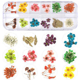 Fall Nail Dried Flowers Professional Kit Set